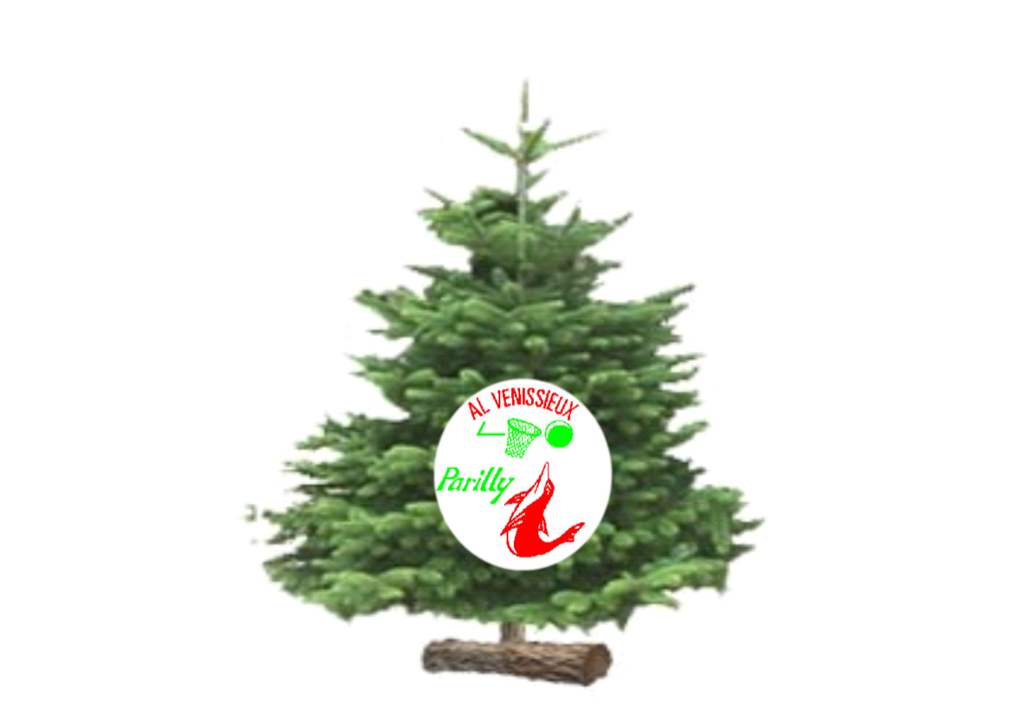 sapin logo